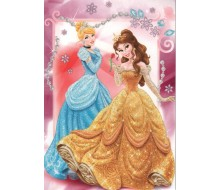 Kaartje Disney Princess